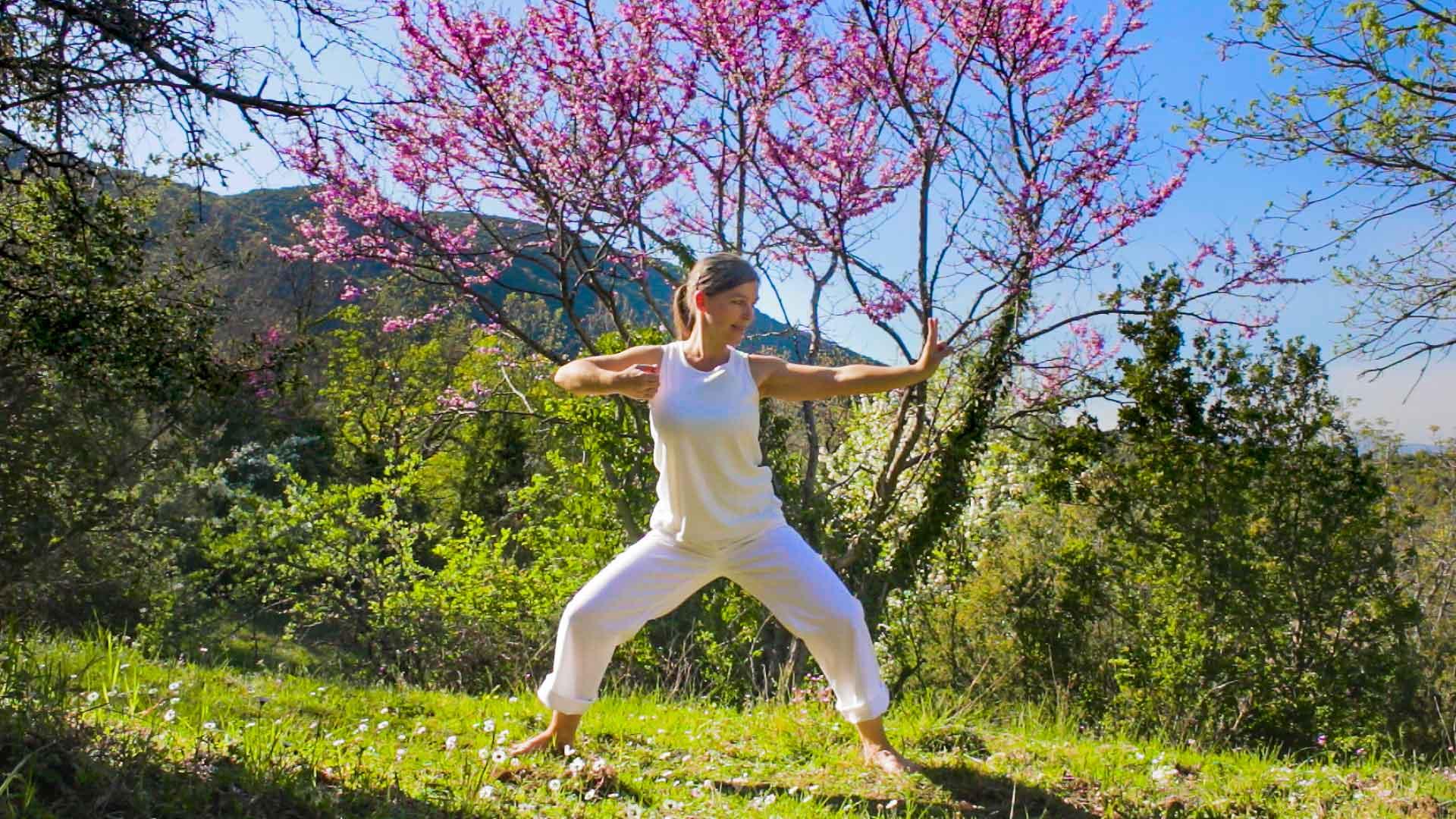Qigong Übung Anfänger Kurs 8 Brokate
