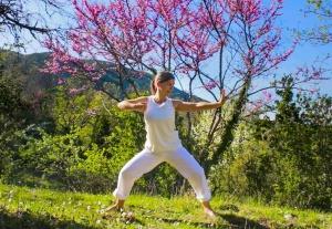Qigong Übungen Überblick